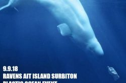 APlasticOcean Documentary to be shown at Ravens Ait Island